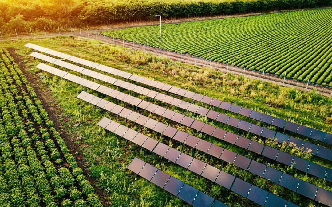 O Agro Não Para: Missão Agtech Israel 2020