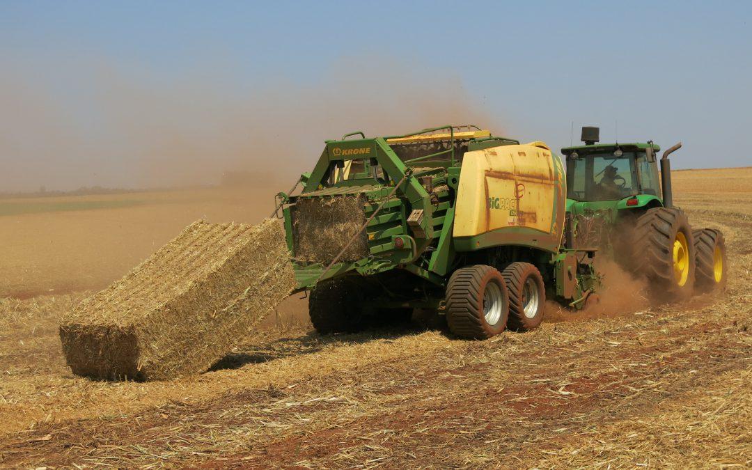 Biomassa produz volume 2,5 maior que carvão mineral